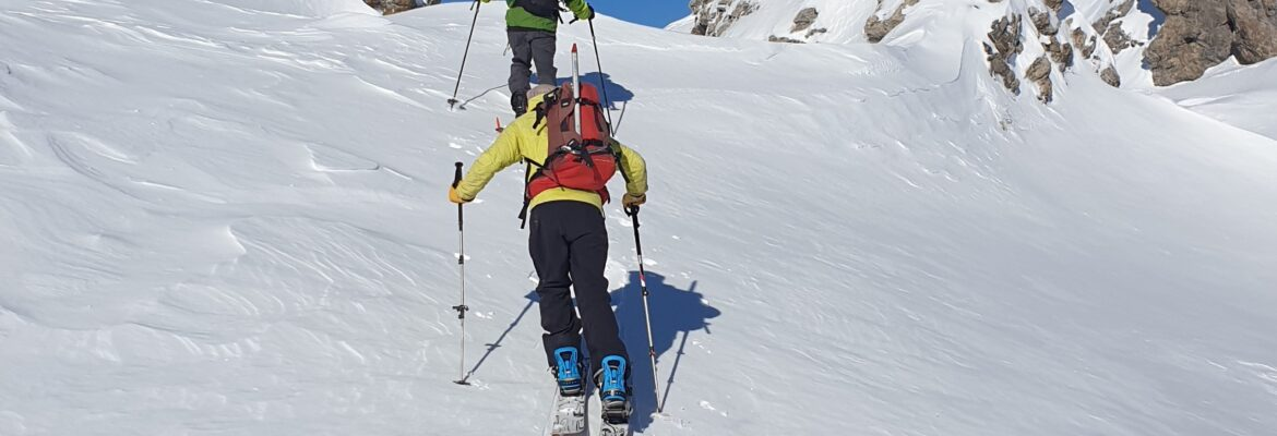 The Splitboard Buyers Guide